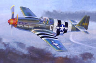 P-51 B-5 Hurry Home Honey - Image 1