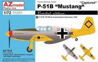 P-51B Mustang Captured