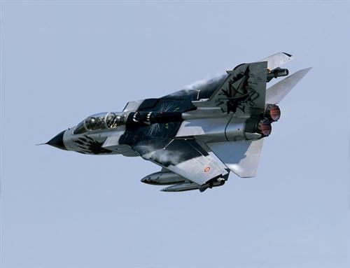 PANAVIA Tornado IDS Black Panthers - Image 1