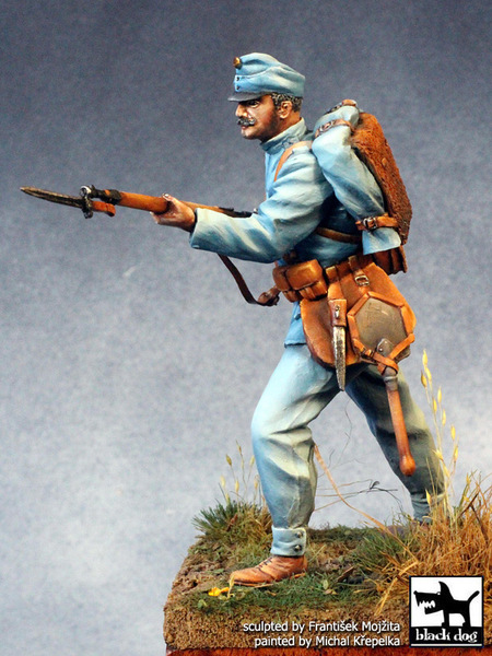Austro-Hungarian soldier WW I - Image 1