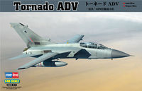 Long-range fighter PANAVIA Tornado ADV