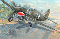 P-40F War Hawk - Image 1