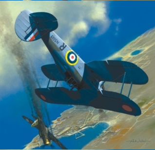 Gloster Sea Gladiator - Image 1